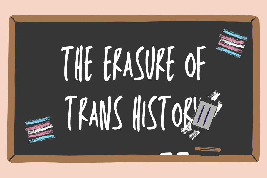 "chalkboard graphic with the text ""The erasure of trans history"" written in chalk, being partially erased."